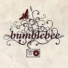 Музыка в стиле BUMBLEBEE