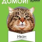 """20 МАРТА АКЦИЯ """"ХОЧУ ДОМОЙ"""""""
