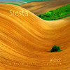 Siesta @ MixCult Podcast # 027