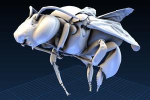 Музейные экспонаты можно будет распечатать на 3D-принтере