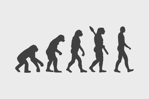 Антропологи описали новый вид человека