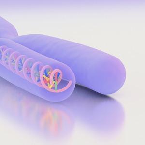 Каждый ген отвечает за один признак?