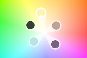 Приложение Adobe позволяет создавать цветовые палитры из фото