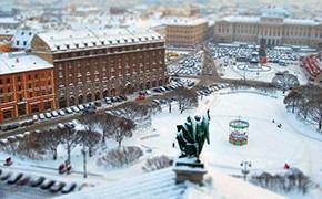 Колонка байера: наблюдения за Петербургом