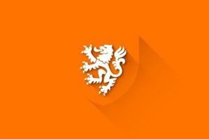Представлены «плоские» версии гербов национальных сборных