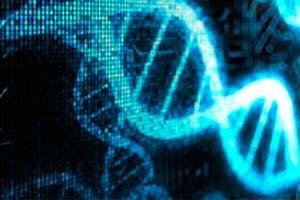 Учёные обнаружили в генах новый вид информации