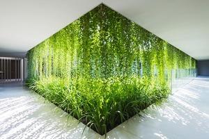 Архитектура дня: белый спа-центр во Вьетнаме с растениями на фасаде