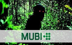 Интернет-кинотеатры: MUBI.com