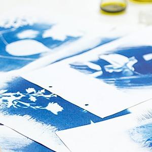 Цианотипия:  Как напечатать фотографию своими руками