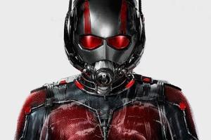 Объявлены сиквел «Человека-муравья» и ещё три фильма Marvel