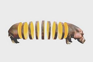 Концепт: животные в виде фруктов