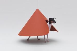 В Калифорнии открылась выставка «Архитектура для собак»
