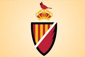 Логотипы футбольных клубов NFL перерисовали на европейский манер