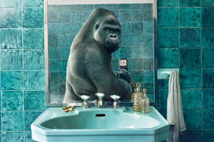 Животные делают селфи в новой рекламе National Geographic
