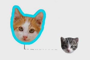 Работу CSS-селекторов объяснили на картинках с котами