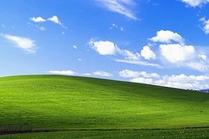 Фотограф объяснил происхождение фона Windows XP