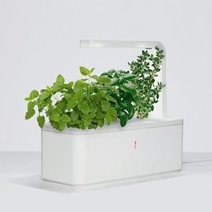 8 технологичных способов выращивать еду дома