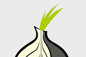 Начался сбор денег на поддержку работы Tor