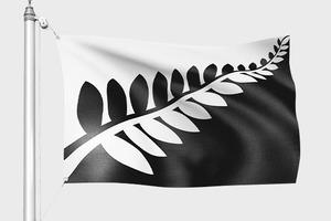 Выложен короткий список вариантов нового флага Новой Зеландии