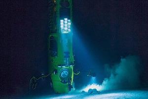 Учёные засняли самую глубоководную рыбу в Марианской впадине