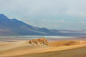 Учёные обнаружили жизнь в самом сухом месте Земли