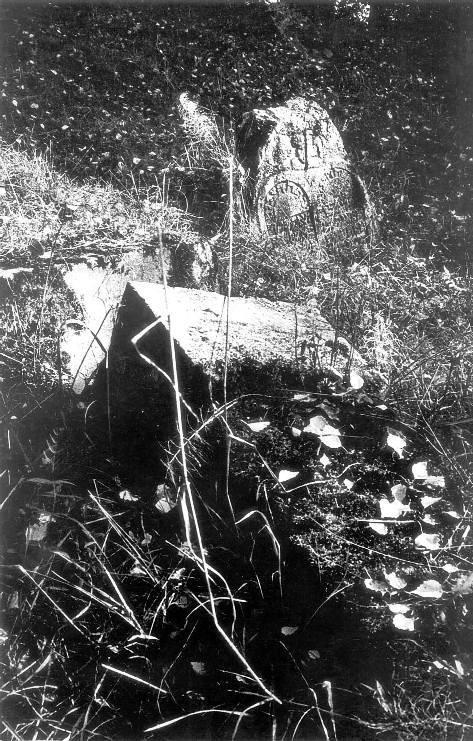Три альбома петербургских классиков фотографии. Изображение № 20.