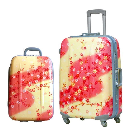 Hideo Wakamatsu: иснова багаж. Изображение № 1.