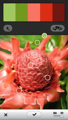 Приложение Adobe позволяет создавать цветовые палитры из фото. Изображение № 1.