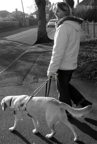 GPSвиляет собакой. Изображение № 5.