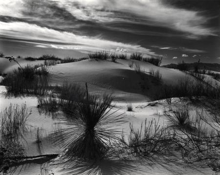 Brett Weston. Изображение № 5.