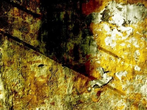 Modern british art: Стены Жерарa Гастингсa. Изображение № 10.