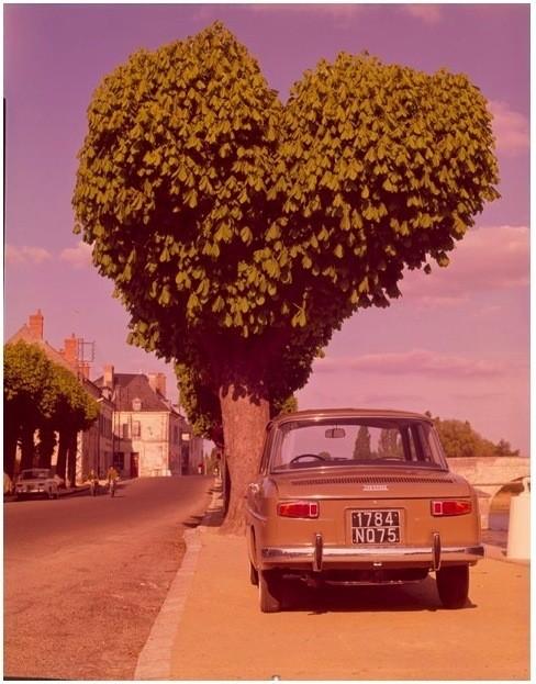 Реклама Renault (1970 г). Изображение № 36.