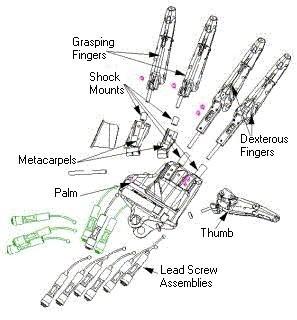 """О человекоподобных роботах, генах и """"хлебе насущном"""". Изображение № 5."""