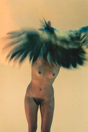 Части тела: Обнаженные женщины на фотографиях 1990-2000-х годов. Изображение №273.