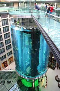 Самый «маленький» аквариум. Изображение № 3.