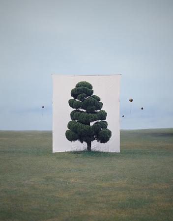 Myoung HoLee's Trees. Изображение № 1.