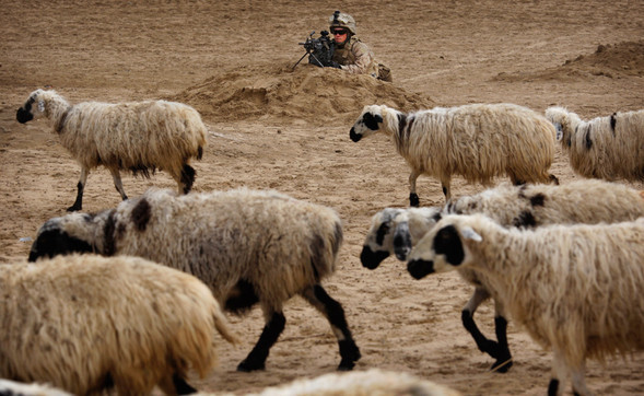 Афганистан. Военная фотография. Изображение № 11.