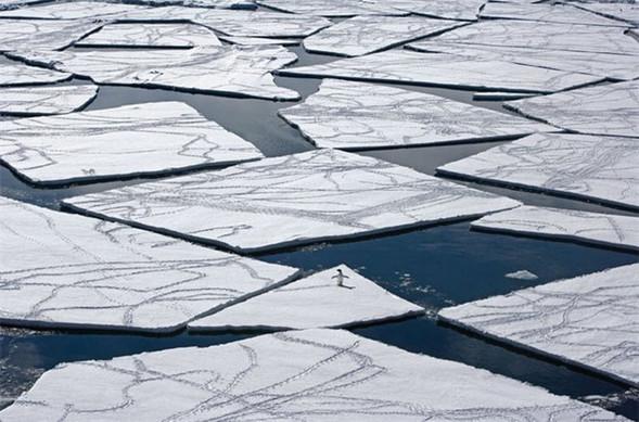 Лучшие снимки от National Geographic. Изображение № 2.