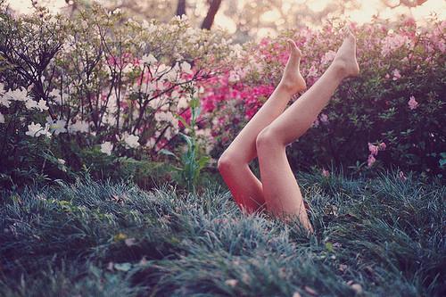 Изображение 13. Никогда не надо слушать, что говорят цветы. Надо просто смотреть на них и дышать их ароматом... Изображение № 13.