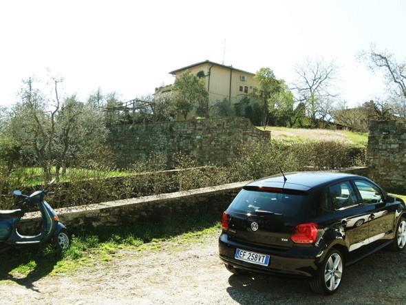 Изображение 32. Тосканское масло.. Изображение № 24.