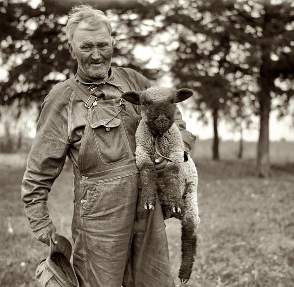 Фотографии с животными, начало прошлого века. Изображение № 6.
