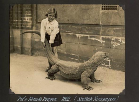 Лондонский Зоопарк 30-х. Изображение № 7.