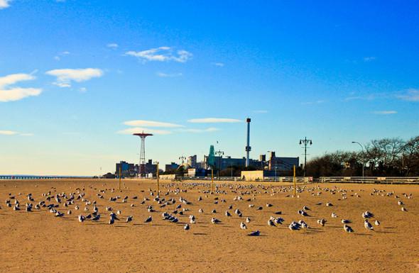 Мечтая о Нью-Йорке. Изображение № 2.