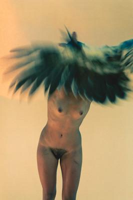 Изображение 7. Новая выставка Райана Макгинли.. Изображение № 6.