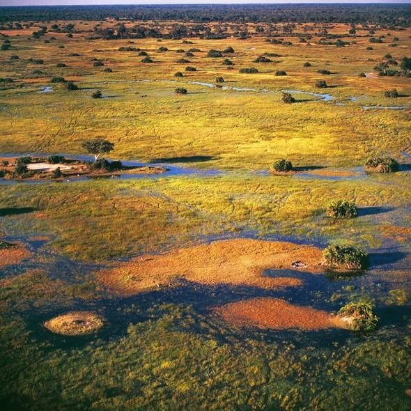 Ботсвана. Изображение № 19.
