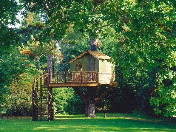 Дома надеревьях отAmazon Tree Houses. Изображение № 15.