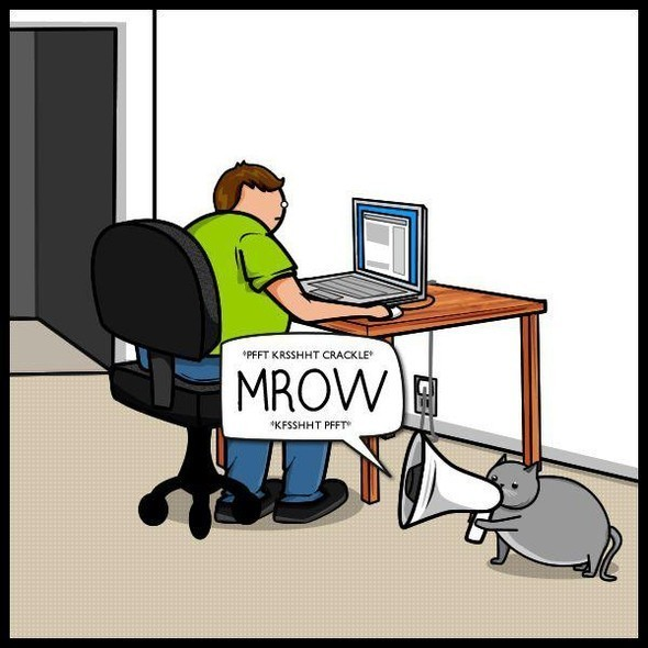 Cat vs. Internet. Изображение № 8.