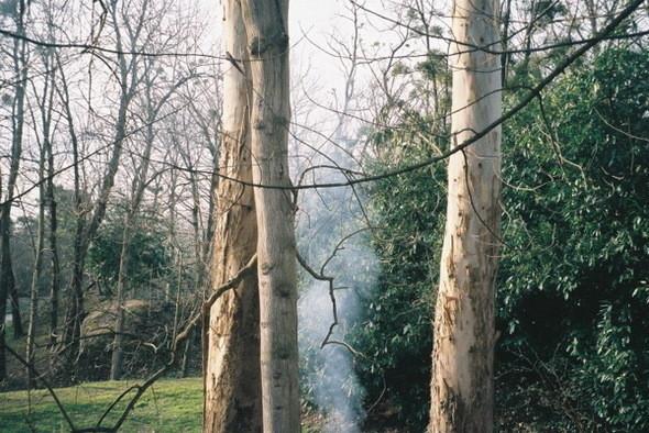 Изображение 42. The most sensitive photos'1.. Изображение № 11.