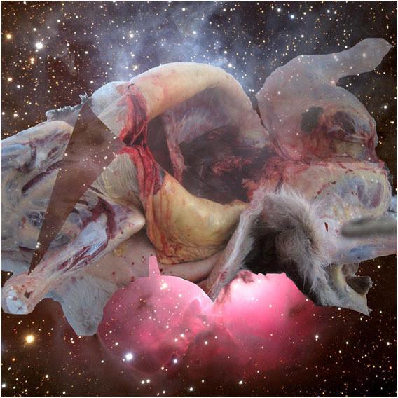 Белок на обочинах сверхновых. Изображение № 2.