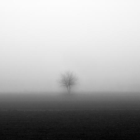 Туманные фотографии. Изображение № 10.